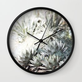 The Succulent Room at Longwood Wall Clock