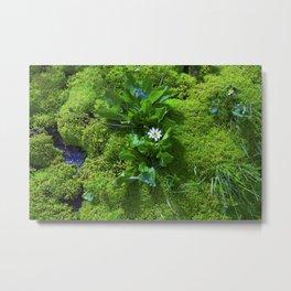 Carpet of Green Metal Print