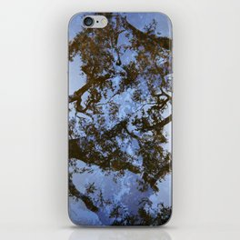 Sungazing Silhouette iPhone Skin