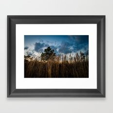 Thoughts of Longing Framed Art Print