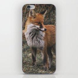 Feelin' Foxy iPhone Skin