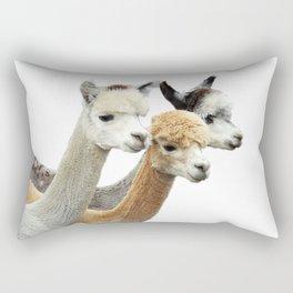 Alpaca Trio Rectangular Pillow