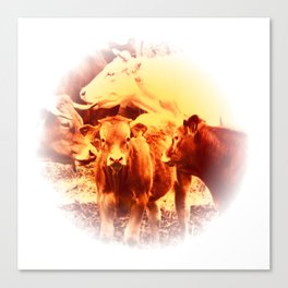 Cows in The Morvan, France (Burnt Sienna Version) Canvas Print
