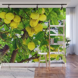 If life gives you lemons... Wall Mural