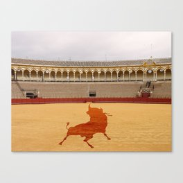 Seville bull Canvas Print