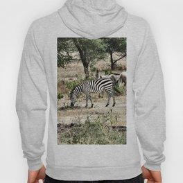 Lonely Zebra Hoody