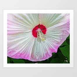 Marsh Rose Art Print
