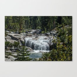 California Forest Waterfall Canvas Print