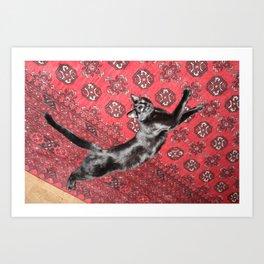 Blackie at Rest Art Print