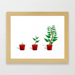 Plant Growth Framed Art Print