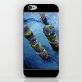 lichen pilings iPhone Skin
