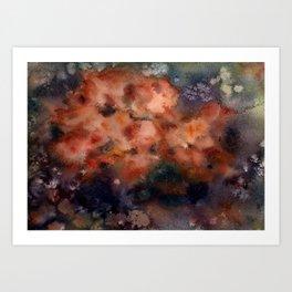 Sea sponge Art Print