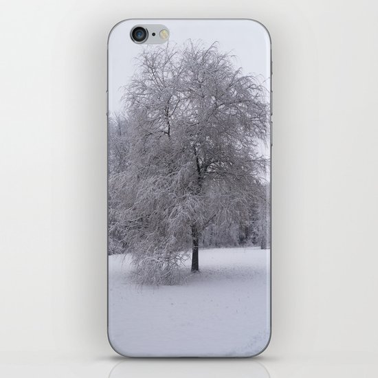Tree and snow iPhone & iPod Skin