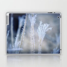 Cold Hoarfrost on the weeds in the winter Laptop & iPad Skin