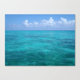 Caribbean Blues Canvas Print