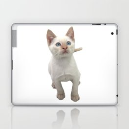 Flame Point Siamese Kitten Laptop & iPad Skin