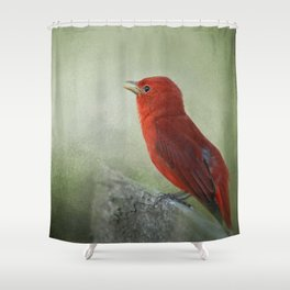 Song of the Summer Tanager 3 - Birds Shower Curtain