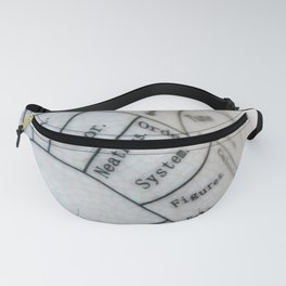 Neatness Fanny Pack