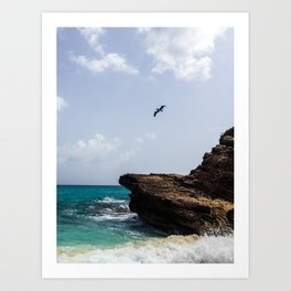 Pelican at Mullet Bay Art Print