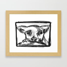 Chihuahua dog Framed Art Print
