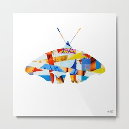 Wayne´s Flying - collab collage Metal Print
