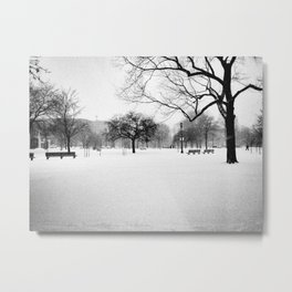 Trinity Bellwoods in the Snow Metal Print