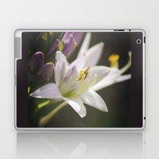 Spotlight on Nature Laptop & iPad Skin