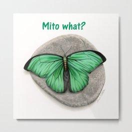 Mito What? Metal Print