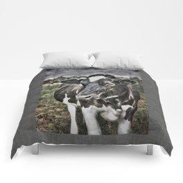 Melancholic Black White Dutch Cow Comforters