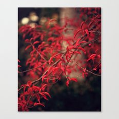 Woodland Red Canvas Print