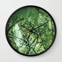Jungle View at Iguazu National Park  Wall Clock