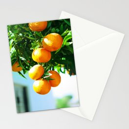 tangerine Stationery Cards
