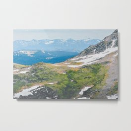 Alpine Mosses Metal Print