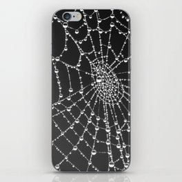 Spider web with dew water drops iPhone Skin
