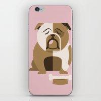 bulldog iPhone & iPod Skins featuring Bulldog by Jude Landry