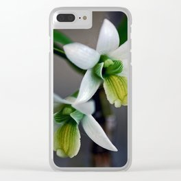 Rough-lipped Dendrobium Clear iPhone Case