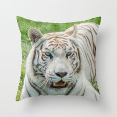 THE BEAUTY OF WHITE TIGERS Throw Pillow