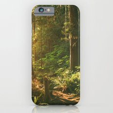 Forest Sunset Slim Case iPhone 6s