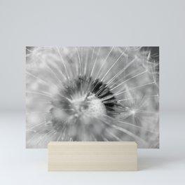 Dandelion b&w Mini Art Print