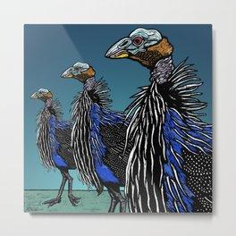 Exotoc birds - Vulturine Guineafowl Metal Print