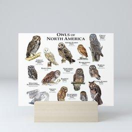 Owls of North America Mini Art Print