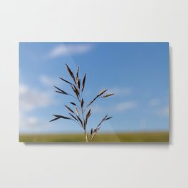 Summer is totally thrilling, and gone before you know it. Metal Print