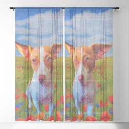 Lilly Sheer Curtain