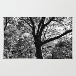 bw Central Park Rug