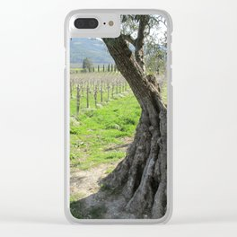 Olive tree in vineyard Clear iPhone Case