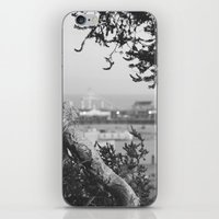 santa monica iPhone & iPod Skins featuring santa monica by gabriellevictoria