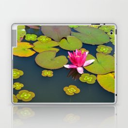 Pink waterlily Laptop & iPad Skin