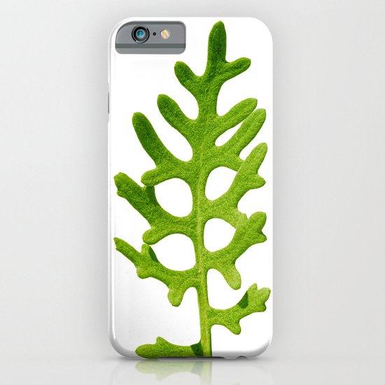 green velvet I iPhone & iPod Case