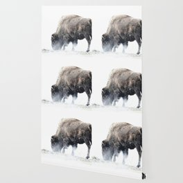 Bison grazing in a snowstorm Wallpaper