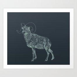 Blue Ram Art Print